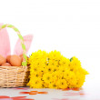 Easter basket with eggs, flowers and bunny ears — Stock Photo #8869630