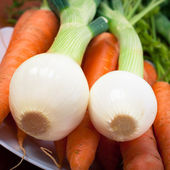 Spring onions and carrots — Stock Photo