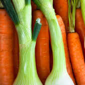Spring onions and carrots detail — Stock Photo