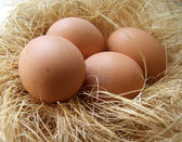 Chicken eggs in a nest — Stock Photo