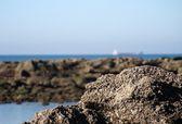 Blick auf den strand und felsen — Stockfoto