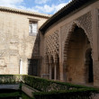 Real Alcazar of Seville — Stock Photo #9800614