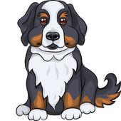 Vector cute Bernese Mountain dog puppy smiles — Stock Vector