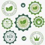 Eco labels with retro vintage design. Vector — Stock Vector