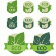 Eco labels with retro vintage design. Vector — Stockvektor