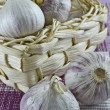 Single garlic bulbs - Stock Photo