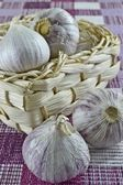 Single garlic bulbs — Stock Photo