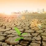 imagem de conceito do aquecimento global — Foto Stock