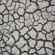 Earth cracked detail background. — Stock Photo #10544913