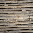 wood texture — Stock Photo #10545805