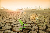 Concept image of global warming. — Stock Photo