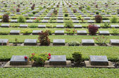 Graveyard — Стоковое фото