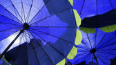 Blue umbrellas background — Stock Photo