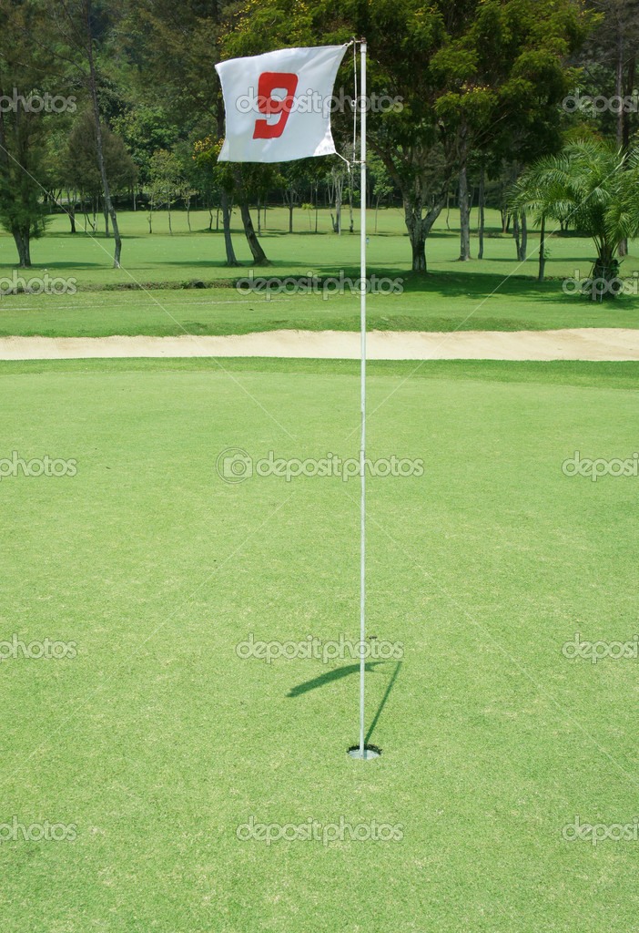 Flag and Flagstick with Shadow on a Golf Course Practive Green  Stock Photo #10564920
