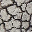 Stock Photo: Earth cracked detail background.