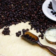 coffee beans — Stock Photo #10582144