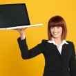 Attractive, young businesswoman holding a laptop — Stock Photo #10115718
