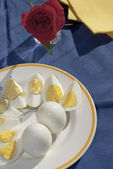 Hard-boiled eggs — Stock Photo