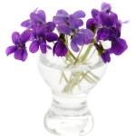 Постер, плакат: Violets in a vase