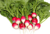 Fresh radishes on a plate. — Stock Photo