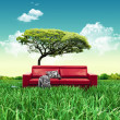 Red sofa on grass field — Stock Photo