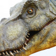 Stock Photo: Dinosaur Tyrannosaurus rex on white