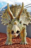 Triceratops dinosaur — Stock Photo