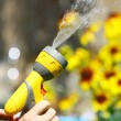 Watering Flowers — Stock Photo #9371553