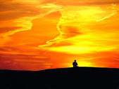 Man on sunset background — Stock Photo