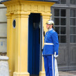 Guard near the Royal Palace in Stockholm — Stock Photo