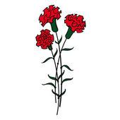 Red Carnations flower flora — Stock Vector