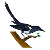 Magpie bird fauna tree — Stock Vector
