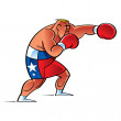 Royalty-Free Stock Vector Image: Boxer Fighter in the Ring sport success strong sport health recreation