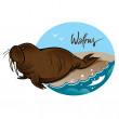 Walrus — Stock Vector #9389141
