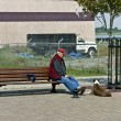 Stock Photo: Senior mresting on bench