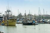 Boats on marina — Stock Photo