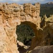 Bryce Canyon Natural Arch — Stock Photo #9494602