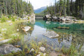 Horseshoe Lake — Stock Photo