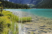 Cavell Lake — Stock Photo