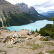 Stock Photo: peyto lake