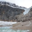 Angel Glacier and Cavell Pond — Stock Photo