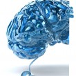 Brain illustration 3d — Stock Photo