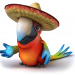 Stock Photo: Mexican parrot