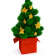 Evergreen tree — Stock Photo