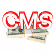 Word CMS and money packs. — Stock Photo #8433661