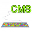 Colorful PC keyboard and big green word CMS. — Stock Photo #8434273