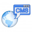 Earth and blue word CMS. — Stock Photo #8434835