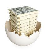 Lots of dollar packs inside cracked eggshell. — Stock Photo
