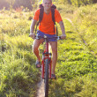 Stock Photo: Cyclist Riding a Bicycle on the Road in the Summer