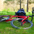 Bike and Backpack Lying on Green Grass — Stock Photo